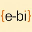 W służbie biznesu e-bi.pl - E-BI sp. z o.o. Rzeszów i okolice