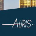 Solidne tłumaczenia - AURIS Poznań i okolice