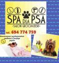 Psi fryzjer - Magdalena Liwak BIŁGORAJ i okolice