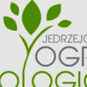 Grzegorz Jędrzejczyk Bielsko-Biała i okolice