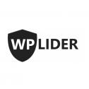 Solidnie i na czas! - WP Lider - Strony I Sklepy Internetowe Płock i okolice