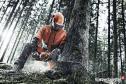 Zakład Usługi leśnych i ogrodniczych Trzcińsko-Zdrój i okolice
