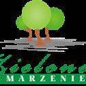 Marzena Sahs DEBOGÓRZE i okolice